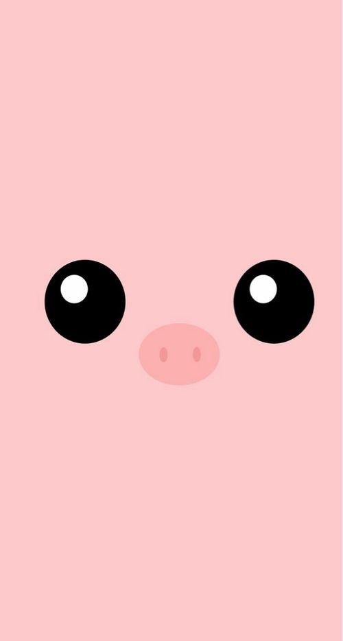 открытка свинка