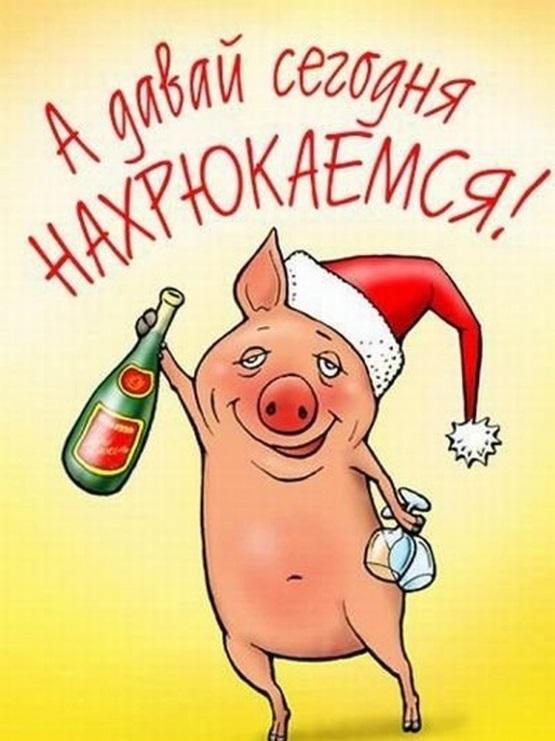 открытка новогодняя со свиньей