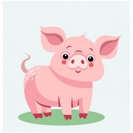 картинка свинка