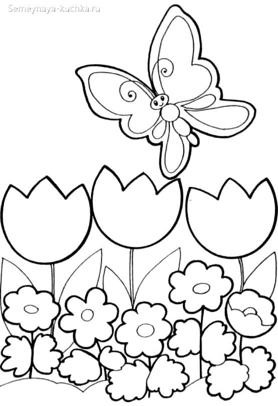 раскраска для маленьких детей цветы и бабочка