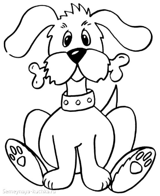 собака с косточкой раскраски для самых маленьких