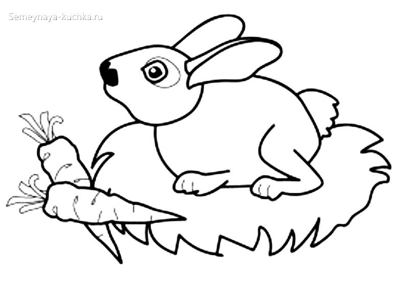 кролик раскраски для самых маленьких на 2 года