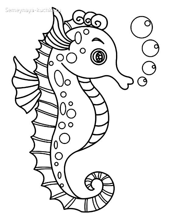 морской конек раскраски для самых маленьких на 2 года