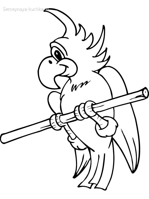 попугай раскраски для самых маленьких детей