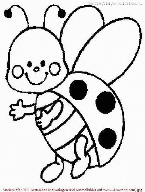 божья коровка раскраска для маленьких детей