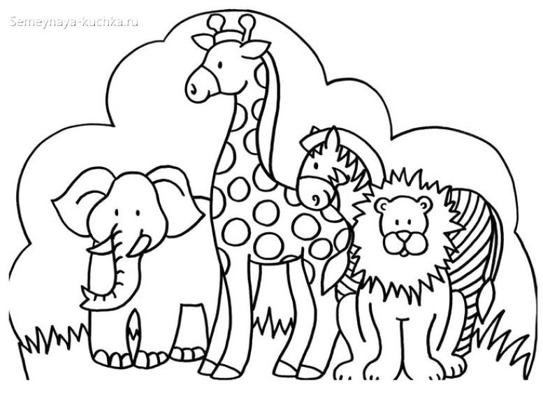 зоопарк жираф зебра слон раскраска для малышей