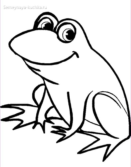 лягушка раскраска для малышей