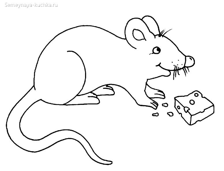мышь и сыр раскраска для маленьких детей