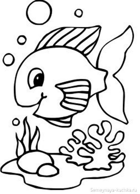 рыбка раскраска для малышей