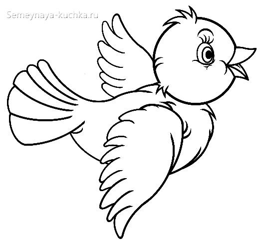 птица раскраска для малышей
