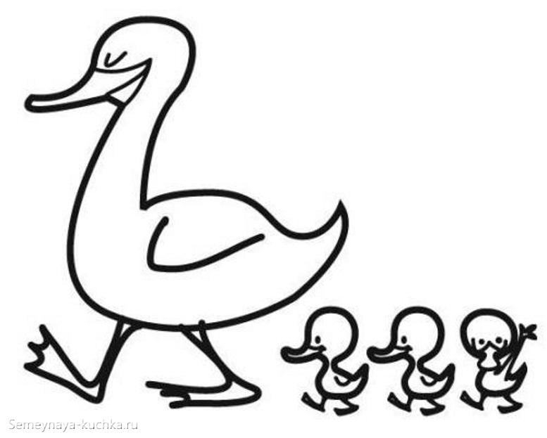 раскраска для маленьких детей утка и утята