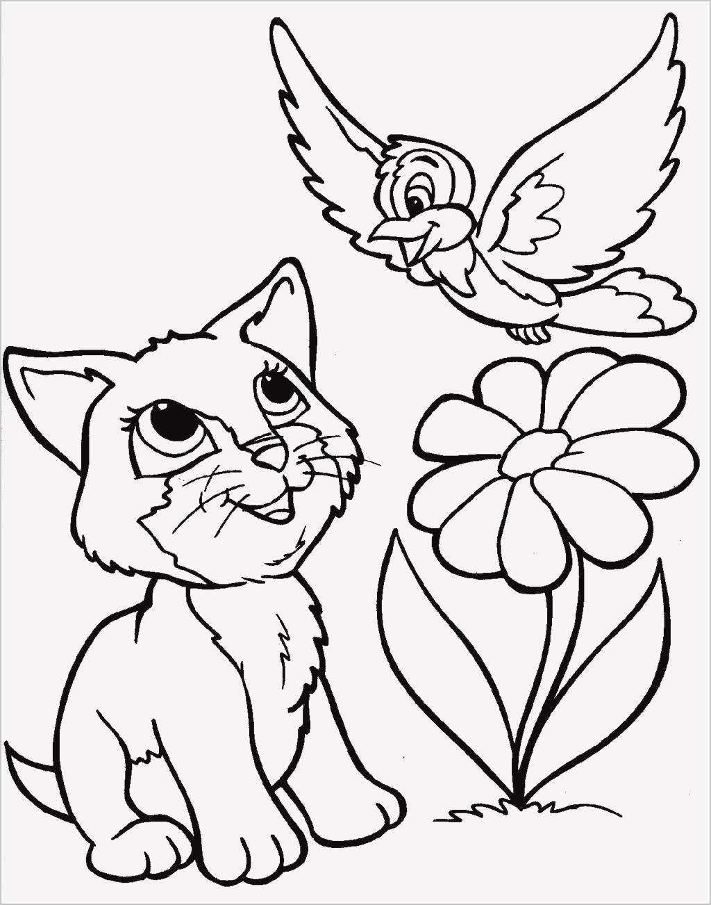 кошка и птичка раскраска для малышей