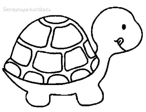 черепаха раскраска для малышей
