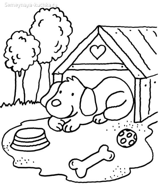 раскраска для маленьких детей щенок в будке собачка