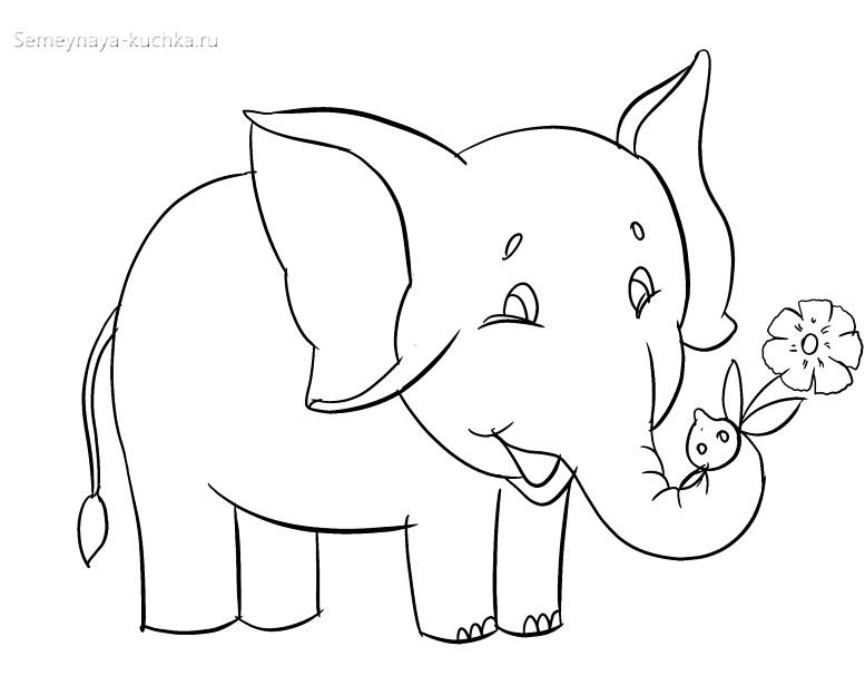 слон раскраска для малышей