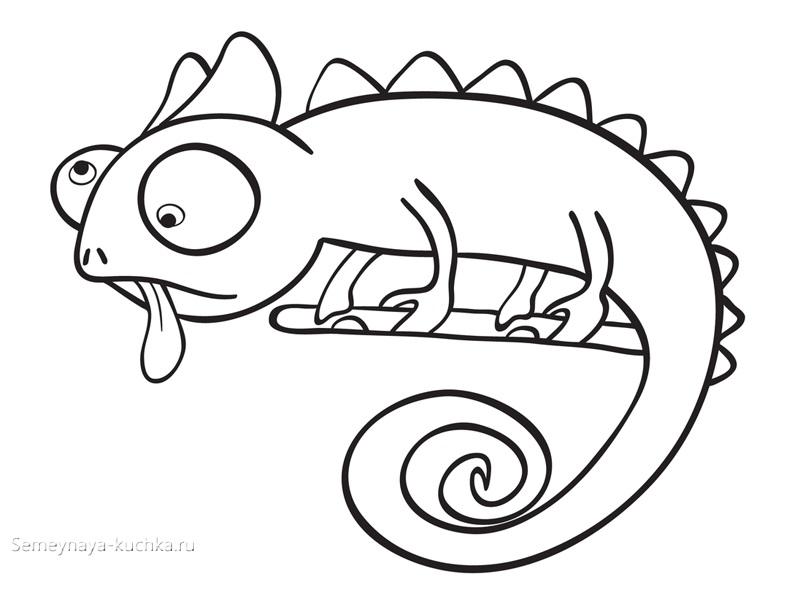 ящерица хамелион раскраски для самых маленьких детей