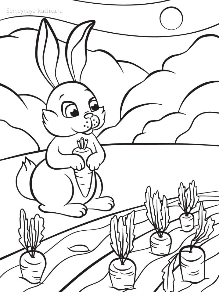 зайчик на грядке с морковкой раскраски для самых маленьких детей
