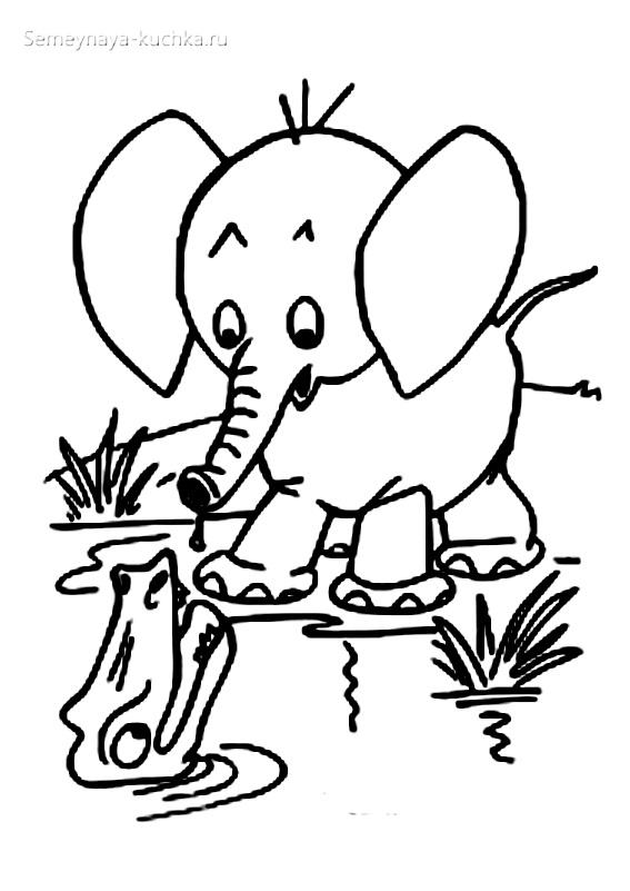 слон и крокодил раскраски для самых маленьких детей