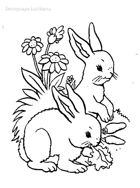 кролики раскраски для самых маленьких детей