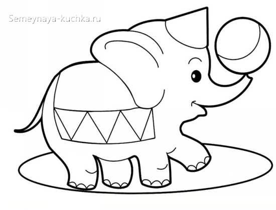 аппликация слоненок в цирке шаблон старшая группа