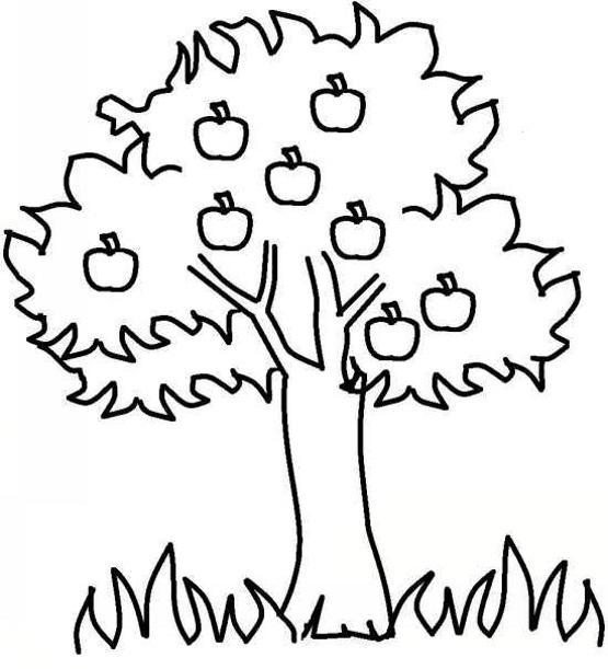 раскраска на 2 года дерево с яблоками