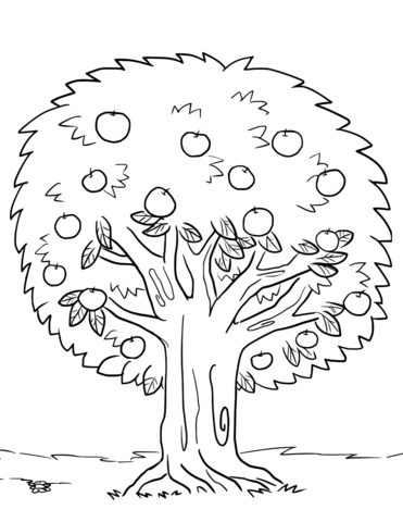 дерево яблоня раскраска