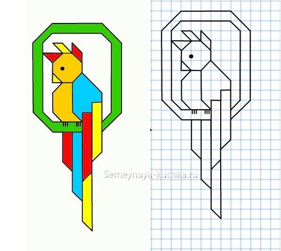 красивый графический диктант попугай