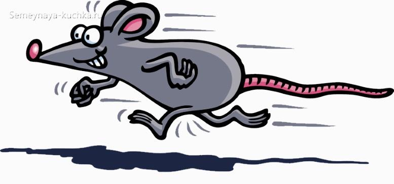 как нарисовать мышь бежит