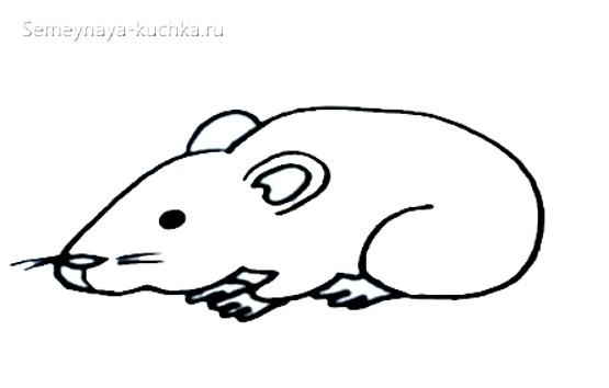 как нарисовать живую мышь
