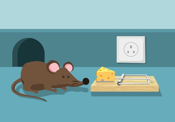 картинка мышка идет к мышеловке