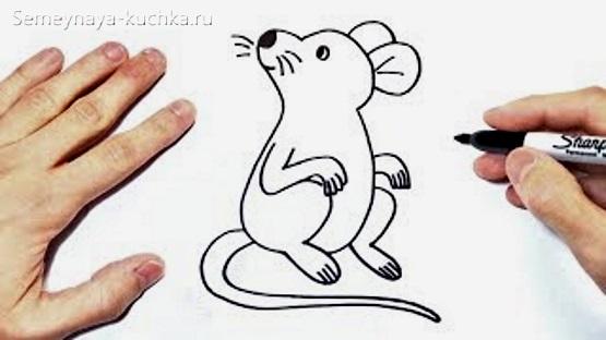 картинка мышка для срисовки