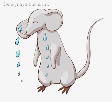 картинка грустная мышь плачет