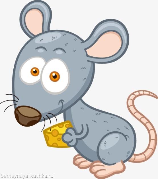 смешная мышка с сыром