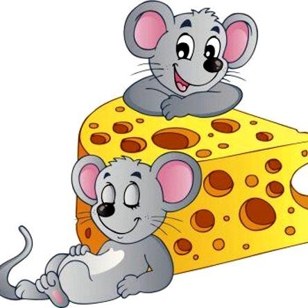 мышки спят рядом с сыром
