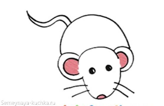 белая мышь рисунок карандашом