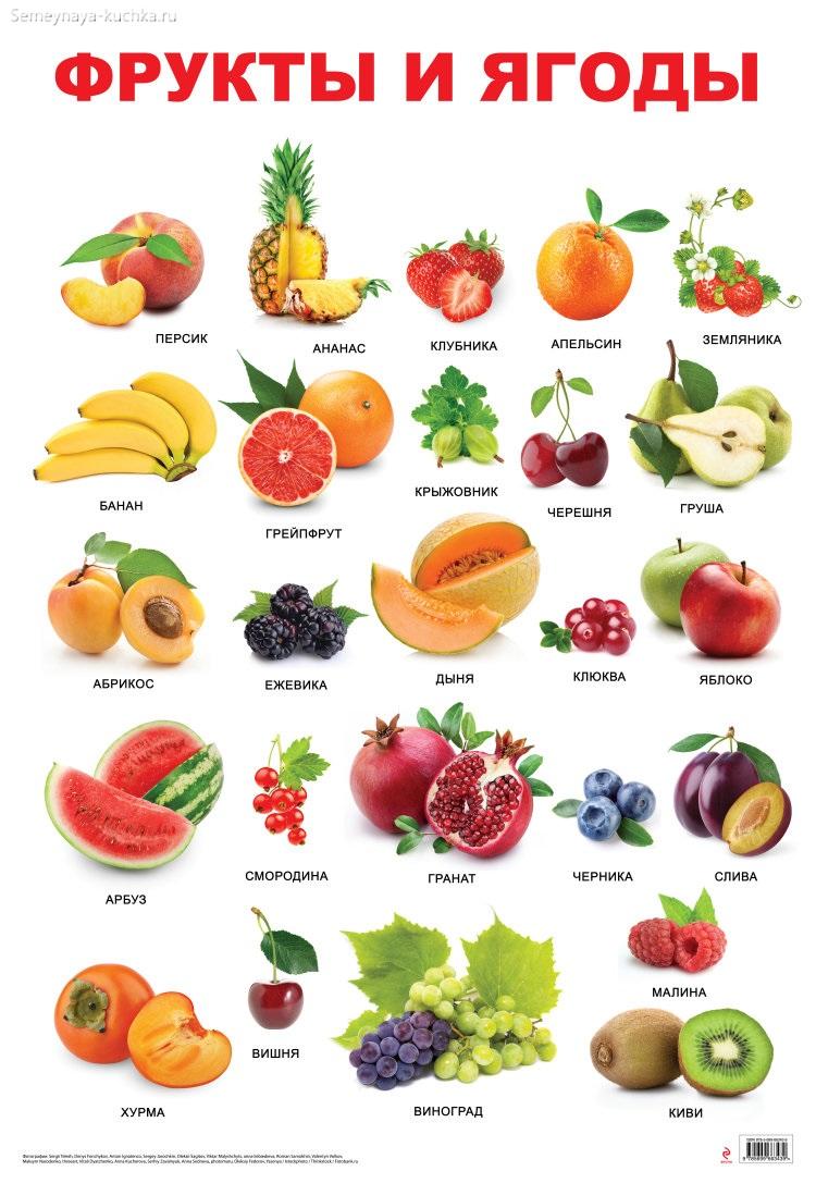 картинка фрукт плакат большой