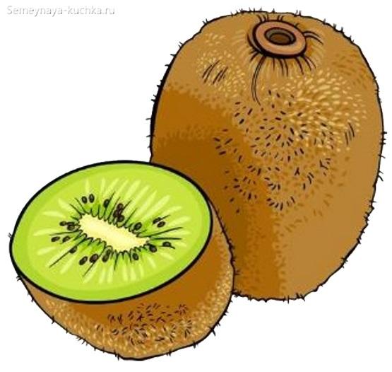 картинка фрукт киви