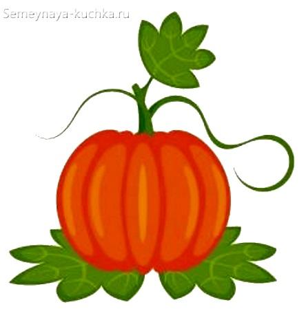 картинка овощи тыква для детей