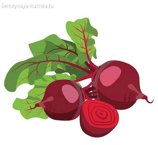 картинка овощ свекла