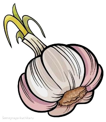 картинка овощи чеснок