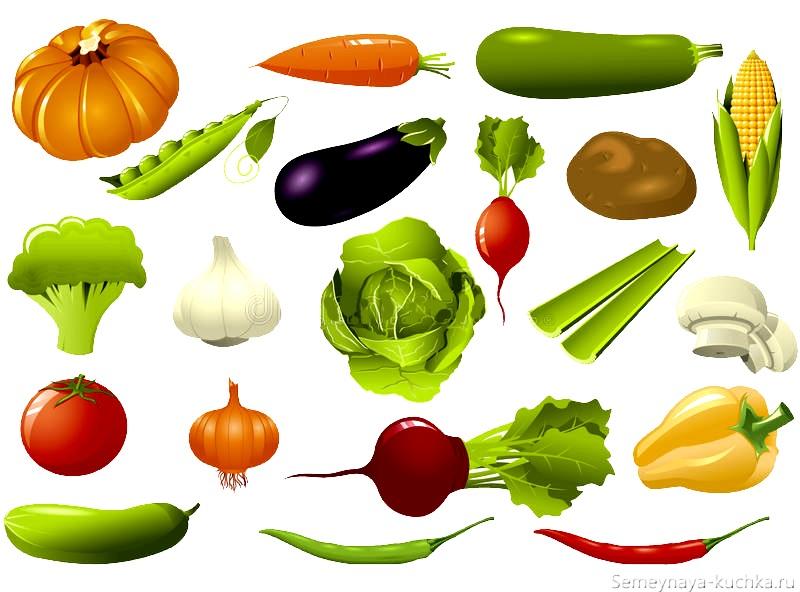 общий плакат с овощами картинка для детей