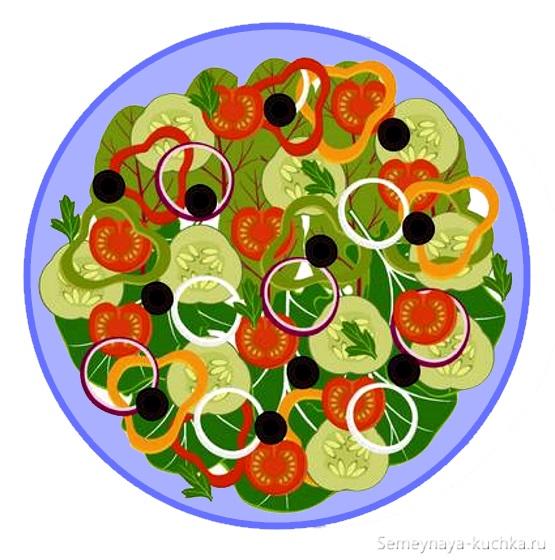 картинка салат из овощей детям