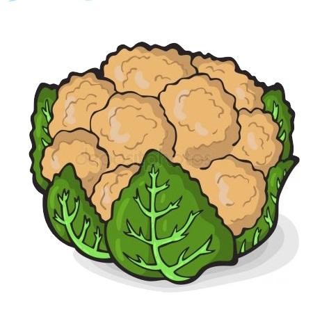 картинка овощ цветная капуста