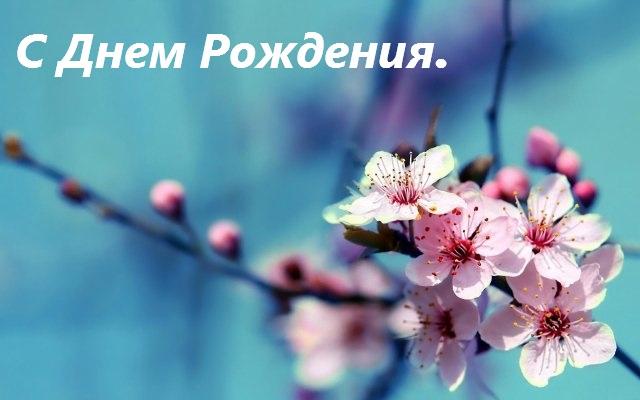 картинка цветы с днем рождения