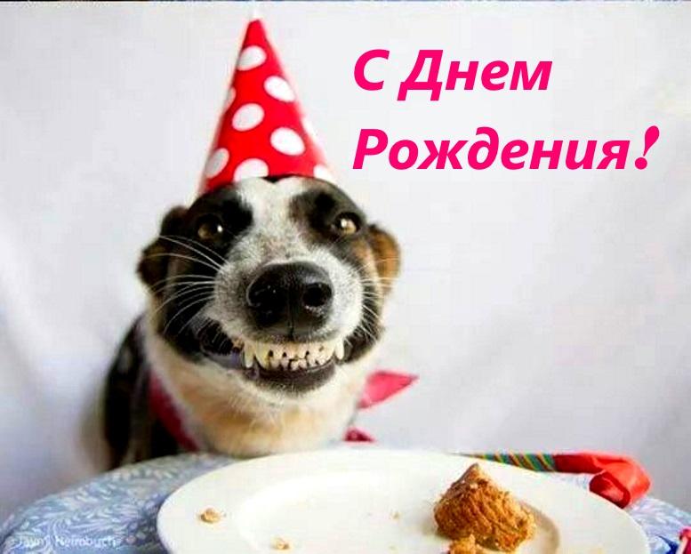 прикольная картинка с днем рождения