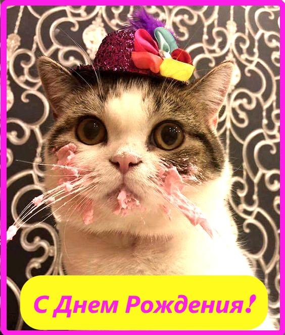 милая картинка с днем рождения