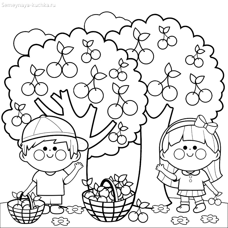 раскраска садовые деревья