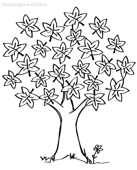 красивое дерево с осенними листьями