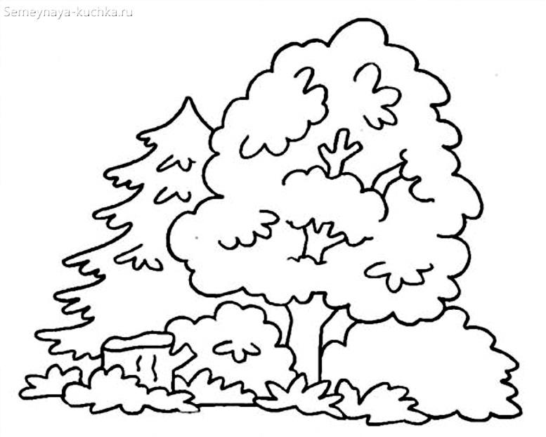 раскраска лесная полянка с деревьями