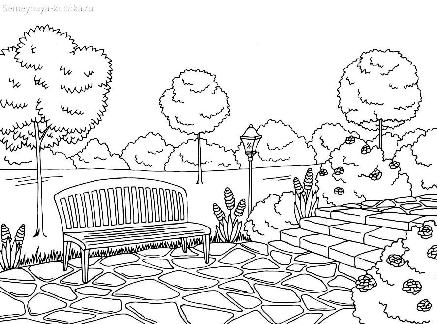 раскраска деревья в парке дорожка скамейка